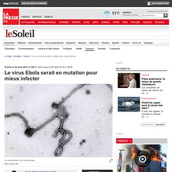 Le virus Ebola serait en mutation pour mieux infecter