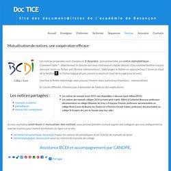 Mutualisation de notices, une coopération efficace – DocTICE