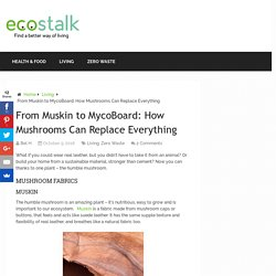 From Muskin to MycoBoard: How Mushrooms Can Replace Everything