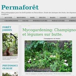 Mycogardening: Champignons et légumes sur butte.