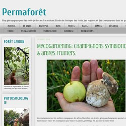 Permaforêt: Mycogardening: champignons symbiotiques & arbres fruitiers.