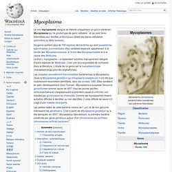 Mycoplasme