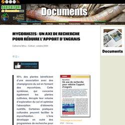 Mycorhizes : Un axe de recherche pour réduire l'apport d'engrais
