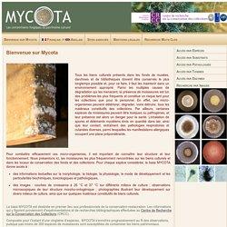 [FR] MYCOTA (CRCC)
