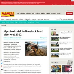 FWI 13/02/13 Mycotoxin risk in livestock feed after wet 2012