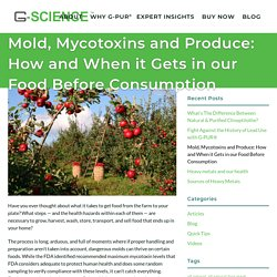 Mold, Mycotoxins and Produce: How and When it Gets in our Food Before Consumption
