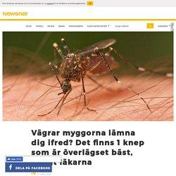 Vägrar myggorna lämna dig ifred? Det finns 1 knep som är överlägset bäst, enl...