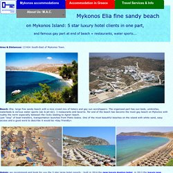 Mykonos Elia Beach for 5 star hotels + gay clientele