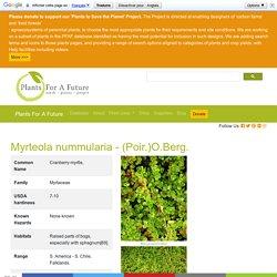 Myrteola nummularia Cranberry-myrtle, PFAF Plant Database