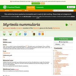 Myrteola nummularia - Practical Plants
