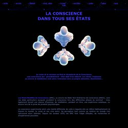 Conscience site COSMOBRANCHE