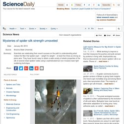 Mysteries of spider silk strength unraveled