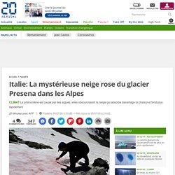 Italie: La mystérieuse neige rose du glacier Presena dans les Alpes 5 juillet 2020