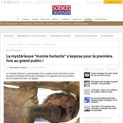 La mystérieuse momie hurlante s'expose au musée du Caire en Egypte - Sciences et Avenir