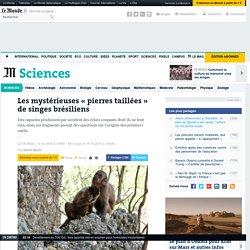 Les mystérieuses «pierres taillées» de singes brésiliens