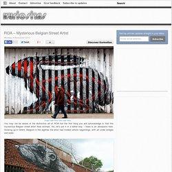 ROA – Mysterious Belgian Street Artist