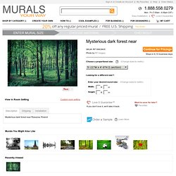 Mysterious Dark Forest Near Mural - RF Images