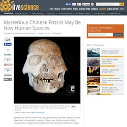 Mysterious Fossils May Be New Human Species | Red Deer Cave People & Hominin Species