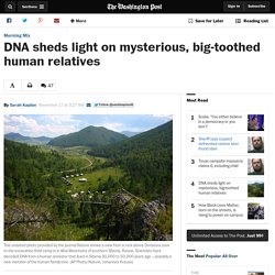 DNA sheds light on mysterious, big-toothed human relatives