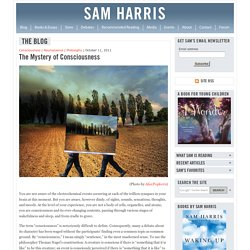 The Blog : The Mystery of Consciousness