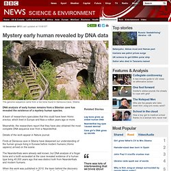 Mystery early human revealed by DNA data