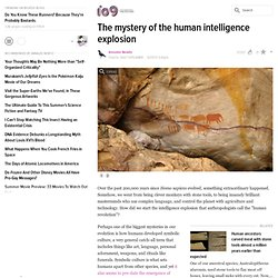 The mystery of the human intelligence explosion