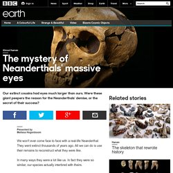 Earth - The mystery of Neanderthals' massive eyes