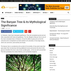 The Banyan Tree & its Mythological Significance