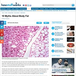 10 Myths About Body Fat - HowStuffWorks