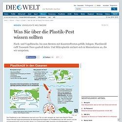 Verseuchte Weltmeere : Was Sie über die Plastik-Pest wissen sollten - Nachrichten Wissenschaft - Natur & Umwelt