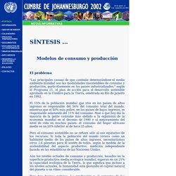Naciones Unidas: Cumbre de Johannesburgo 2002