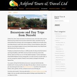 Nairobi Excursions Tours, Nairobi Kenya Holiday Safaris Packages
