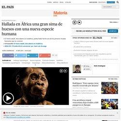 'Homo naledi': Hallada en África una gran sima de huesos con una nueva especie humana