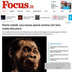 Homo naledi, una nuova specie umana che farà molto discutere