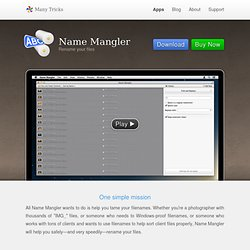 Name Mangler - Batch Filename Editor
