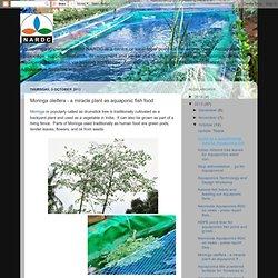 Moringa oleifera - a miracle plant as aquaponic fish food