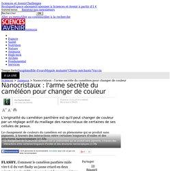 Nanocristaux : l'arme secrète du caméléon pour changer de couleur