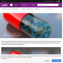 FRANCE CULTURE 31/05/19 LA METHODE SCIENTIFIQUE - Nanomatériaux : voir le futur en petit !