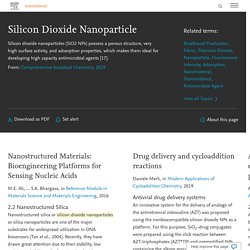 Silicon Dioxide Nanoparticle - an overview