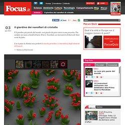 Nanosculture floreali in provetta