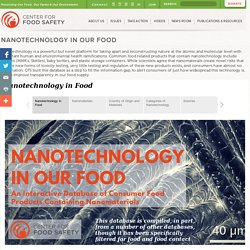 Nanotechnology in Our Food