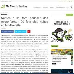 Nantes : ils font pousser des micro-forêts 100 fois plus riches en biodiversité