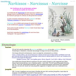 Narkissos - Narcissus - Narcisse