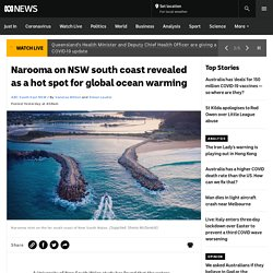 Narooma on NSW south coast revealed as a hot spot for global ocean warming