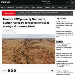 Massive NSW property Narriearra Station hailed by conservationists as ecological treasure trove