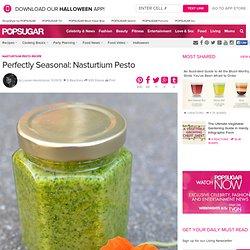 Nasturtium Pesto Recipe