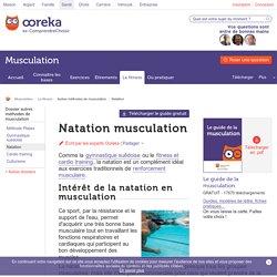 La natation pour se muscler - Ooreka