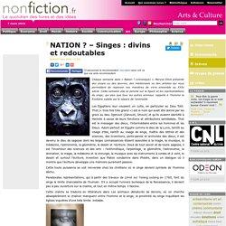 NATION ? – Singes : divins et redoutables