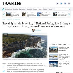 Travel tips and advice, Royal National Park guide: Sydney's epic coastal hike you should attempt at least once