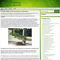 National Bonsai Plant Collection At Living Gifts ~ Send Friendship Bands to Special One
